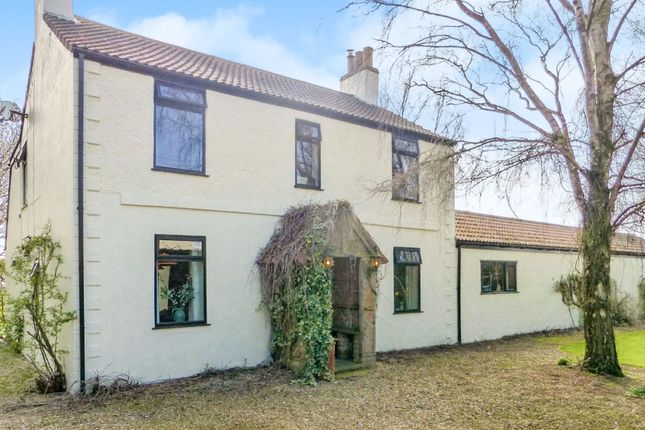 Thumbnail Detached house for sale in Whitemoor Road, March