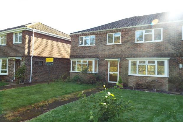 Thumbnail Property to rent in Riverside Gardens, Romsey