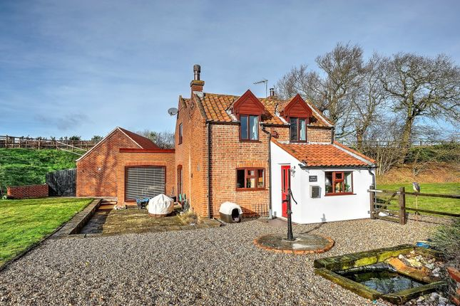 Thumbnail Detached house for sale in Thorpe-Next-Haddiscoe, Norwich