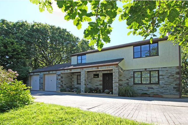 Thumbnail Detached house for sale in Race Hill, Point Mills, Nr Truro