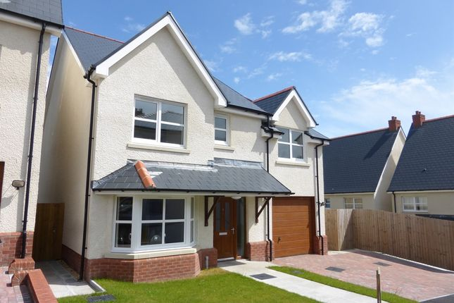 Thumbnail Detached house for sale in Bethany Lane, West Cross, Swansea