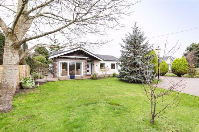 Thumbnail Bungalow for sale in Westbury Lane, Coombe Dingle, Bristol
