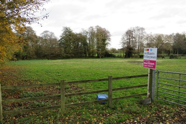 Land for sale in Norwich Road, Corpusty, Norwich NR11