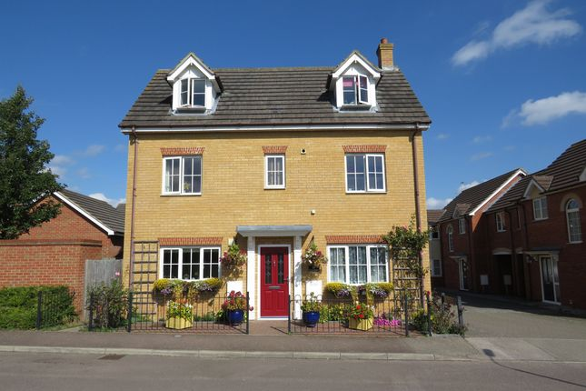 Thumbnail Detached house for sale in Richard Easten Road, Thetford