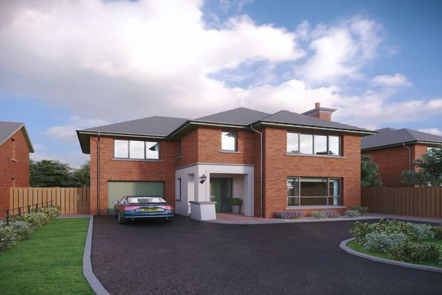 Thumbnail Detached house for sale in Hanover Hill, Bangor