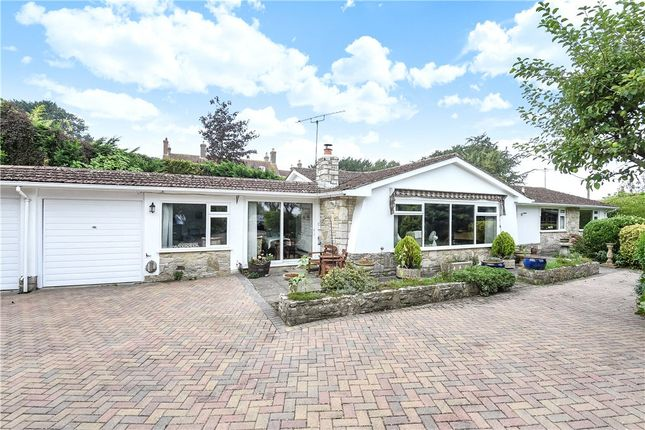Thumbnail Detached bungalow for sale in Louse Lane, Spetisbury, Blandford Forum