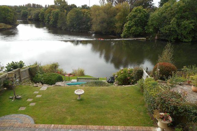 Thumbnail Flat to rent in Salmon Pool Lane, St Leonards, Exeter