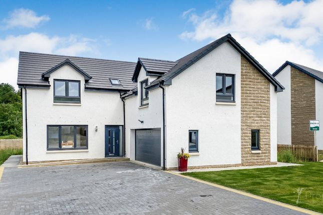 Thumbnail Detached house for sale in Clyde Grove, Crossford