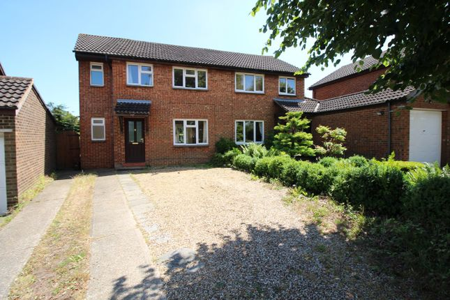 Thumbnail Semi-detached house to rent in Coleridge Close, Hitchin