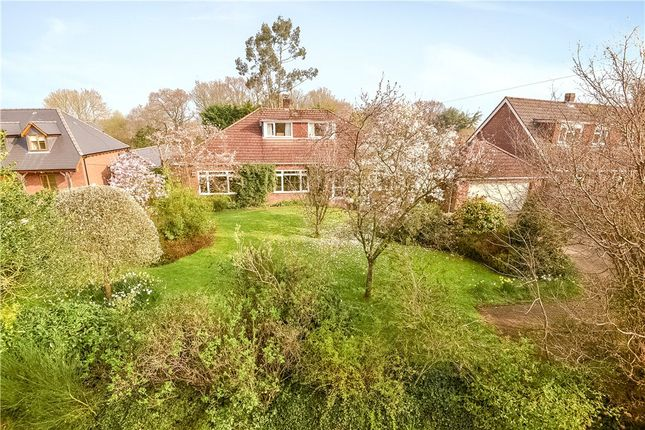 Thumbnail Property for sale in Maurys Lane, West Wellow, Romsey, Hampshire