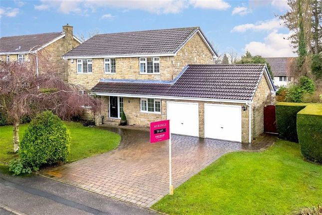 Thumbnail Detached house to rent in Fulwith Gate, Harrogate, North Yorkshire
