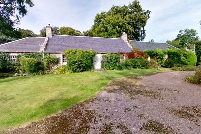 Thumbnail Cottage for sale in Market Stance, Geddes, Nairn