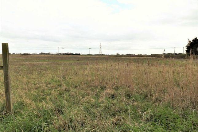Land for sale in Ryefield Lane, Holbeach Fen, Holbeach, Spalding