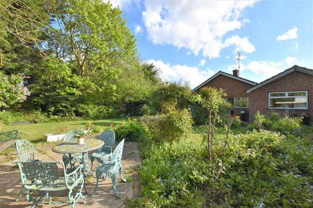 3 bed detached bungalow for sale in Highlands Drive, Maldon CM9