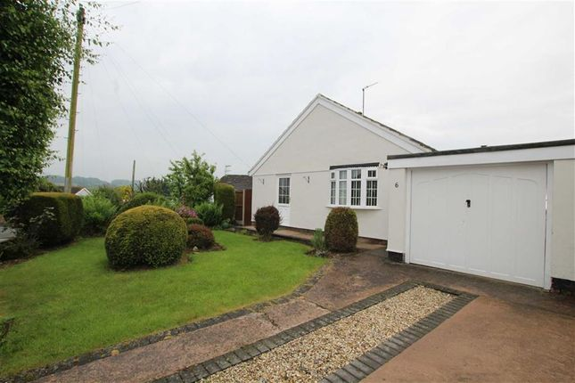 Thumbnail Detached bungalow to rent in The Links, Gwernaffield, Flintshire