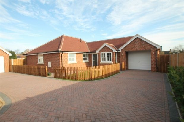 Thumbnail Detached bungalow for sale in 85 Nayland Rd, Colchester, Essex