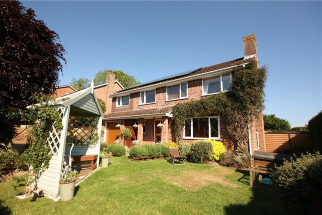 Thumbnail Detached house for sale in Saxon Rise, Winterborne Stickland, Blandford Forum