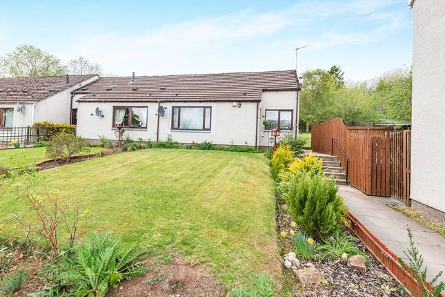 Thumbnail Bungalow for sale in Wrightfield Park, Maryburgh, Dingwall