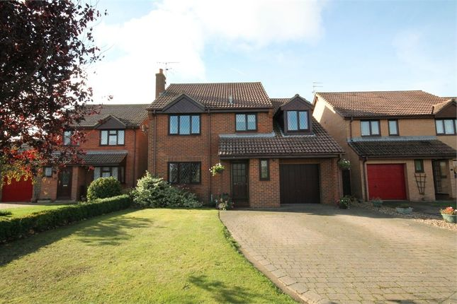 Thumbnail Detached house for sale in Stallards Crescent, Kirby Cross, Frinton-On-Sea