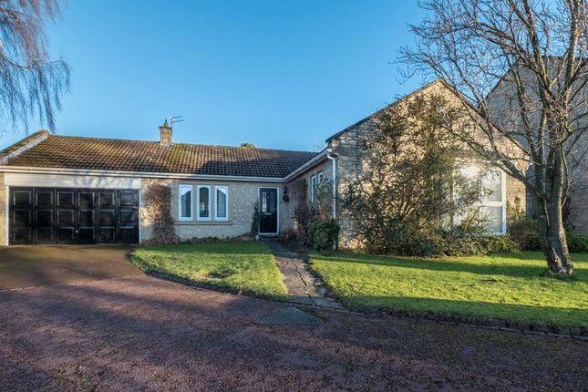 Thumbnail Detached bungalow for sale in Beech Close, Melton Park, Gosforth