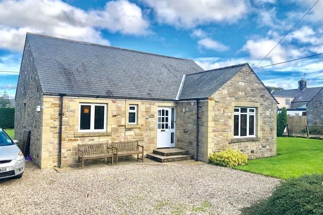 Thumbnail Detached bungalow to rent in Ditchburn Road, South Charlton, Alnwick