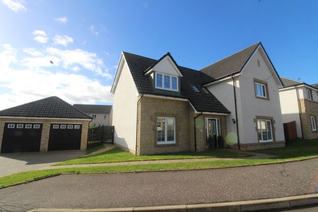 Thumbnail Detached house for sale in Donaldson Road, Falkirk