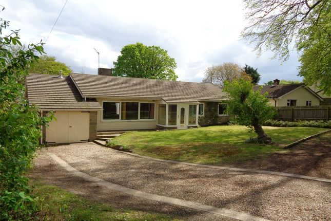 Thumbnail Bungalow to rent in Duchess Drive, Newmarket