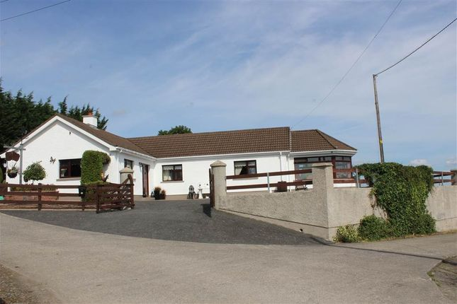 Thumbnail Bungalow for sale in Derryleckagh Road, Newry