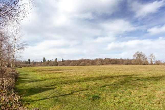 View Of Meadow of Hazel Grove, Kingwood, Henley-On-Thames, Oxfordshire RG9