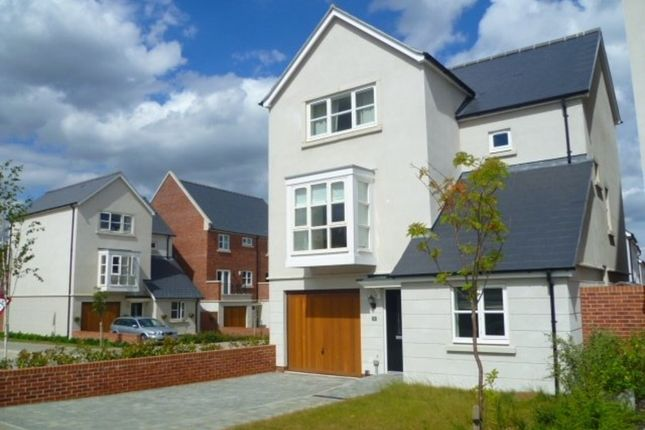 Thumbnail Detached house to rent in Cutting Drive, Basingstoke