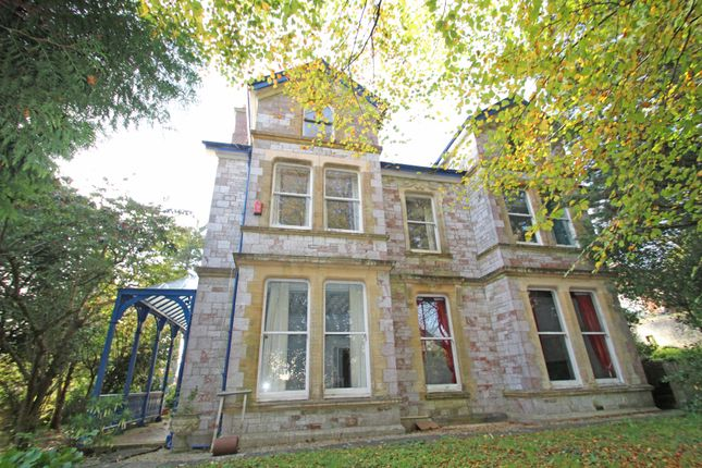 Thumbnail Detached house for sale in Thornhill Road, Mannamead, Plymouth
