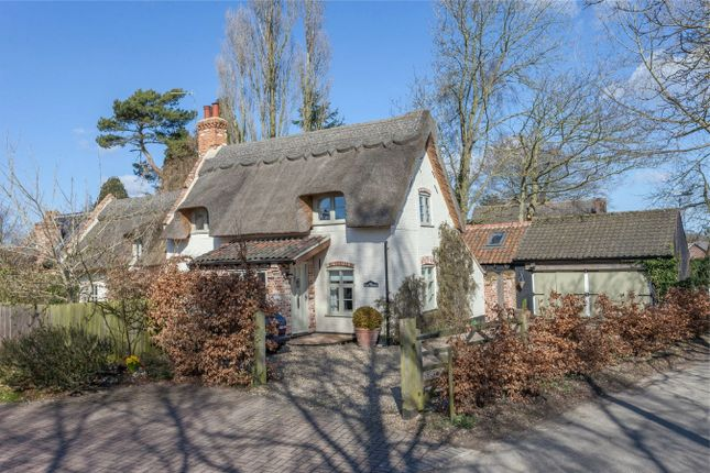 Thumbnail Cottage for sale in Ranworth Road, Blofield Heath, Norwich