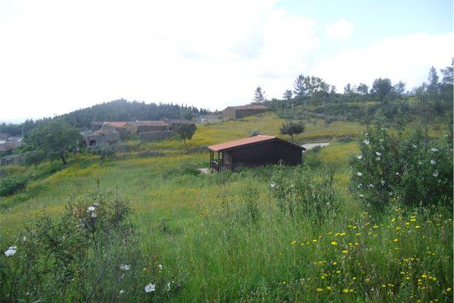 1 bed farmhouse for sale in Vila Velha De Ródão, Castelo Branco, Vila Velha De Ródão (Parish), Vila Velha De Ródão, Castelo Branco, Central Portugal