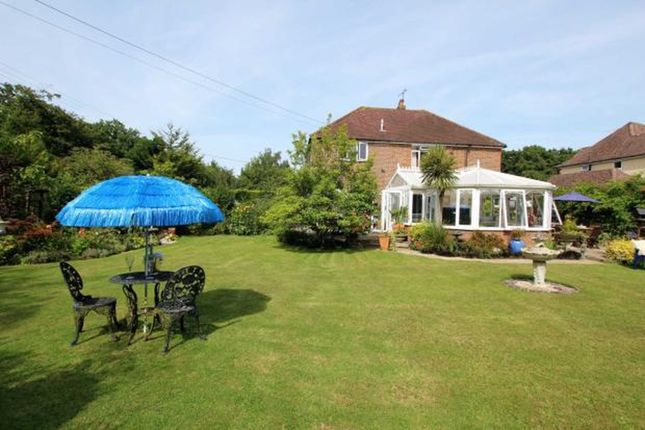 Thumbnail Detached house for sale in Woodside Way, Hailsham