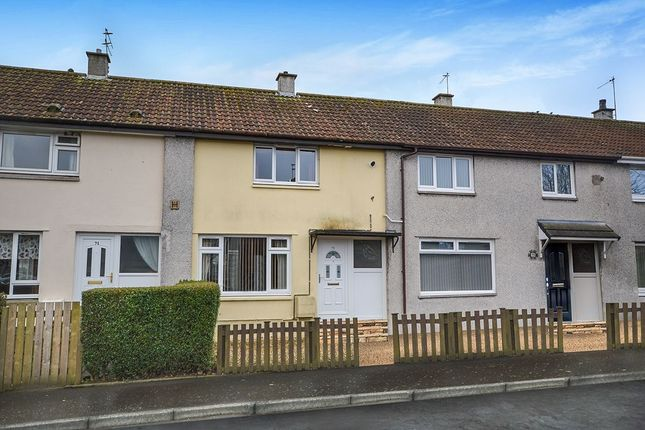 Thumbnail Terraced house to rent in Scott Road, Glenrothes