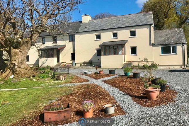 4 bed semi-detached house to rent in Pistyllgwyn, Salem, Llandeilo SA19