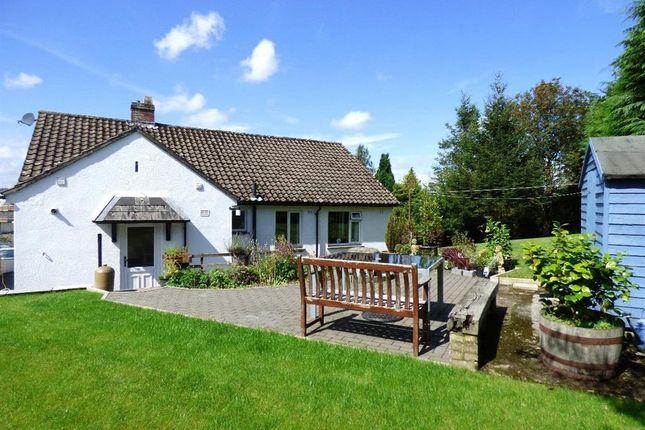 Thumbnail Detached bungalow to rent in Oxenholme Road, Kendal, Cumbria