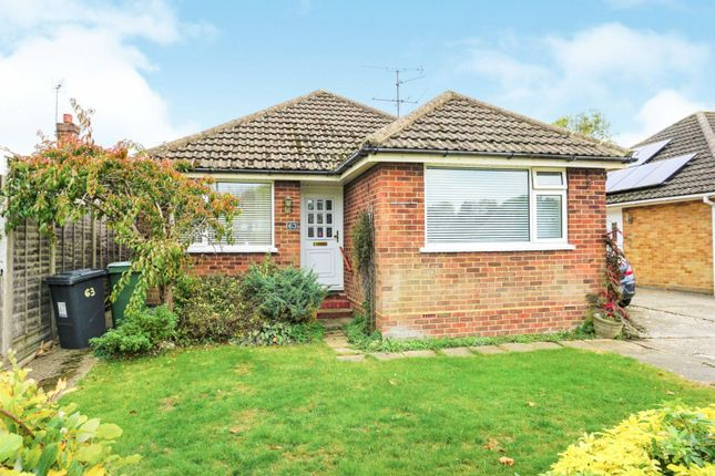 Thumbnail Detached bungalow for sale in Buckland Avenue, Basingstoke