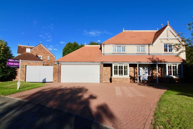 Thumbnail Detached house for sale in Blaise Garden Village, Hartlepool