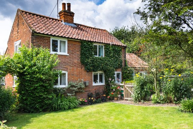 Thumbnail Detached house for sale in Common Road, Aldeby