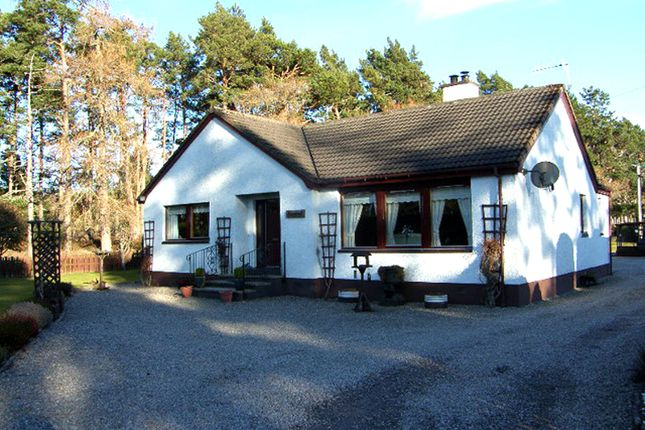 Thumbnail Bungalow for sale in Aviemore