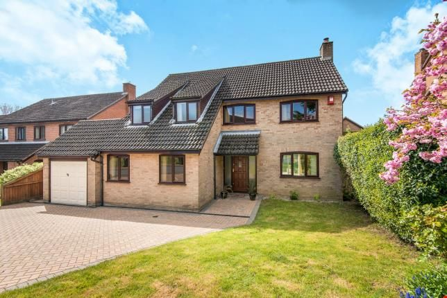 Thumbnail Detached house for sale in Cringleford, Norwich, Norfolk