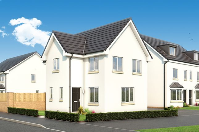 "Thumbnail Property for sale in ""The Fyvie"" at Cambuslang Road, Cambuslang, Glasgow"