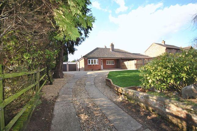 2 bed semi-detached bungalow to rent in Sandy Lane, Taverham, Norwich NR8