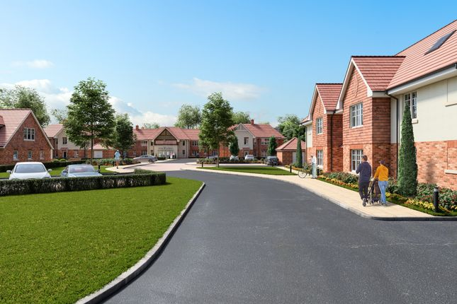 Thumbnail Property for sale in Chantry Court, Broadbridge Heath, Horsham