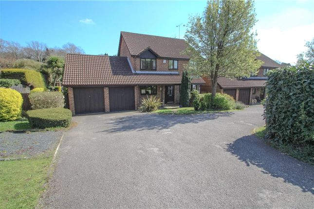 Thumbnail Detached house for sale in Pevensey Way, Frimley, Camberley, Surrey