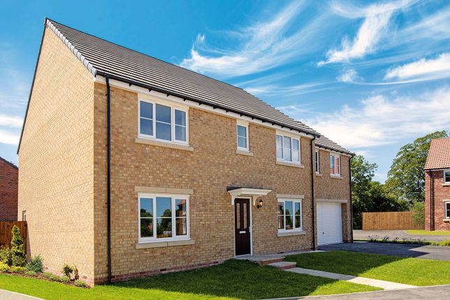 "Thumbnail Detached house for sale in ""The Asenby"" at St. Thomas's Way, Green Hammerton, York"
