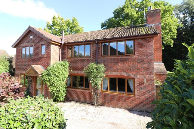Thumbnail Detached house for sale in Marls Road, Botley, Southampton