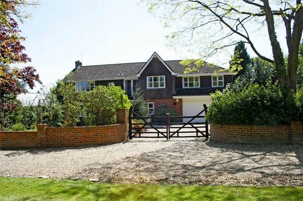 Thumbnail Detached house for sale in Sandleheath, Fordingbridge, Hampshire