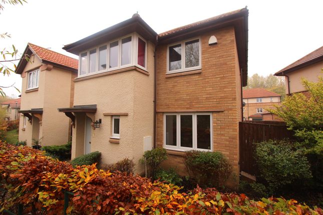 Thumbnail Detached house to rent in Locomotion Lane, Darlington